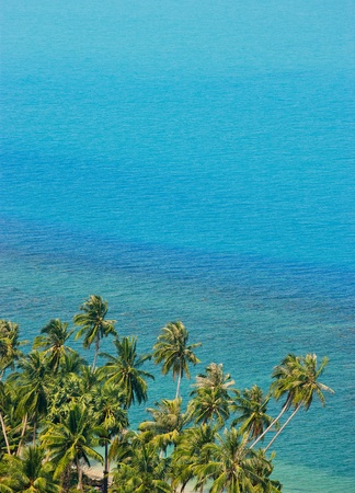 Coconut trees and sea Stock Photo