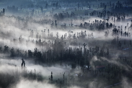 The mist at Cemoro Lawang Village Bromo Indonesia Stock Photo