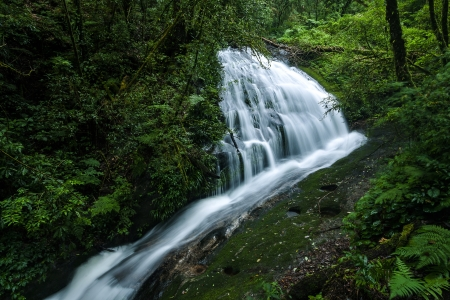 The beautiful waterfall in forest at Doi Inthanon, Chiangmai, Thailand photo