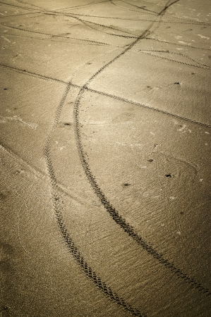 Bicycle wheel tracks on the wet sand Stock Photo - 17425895