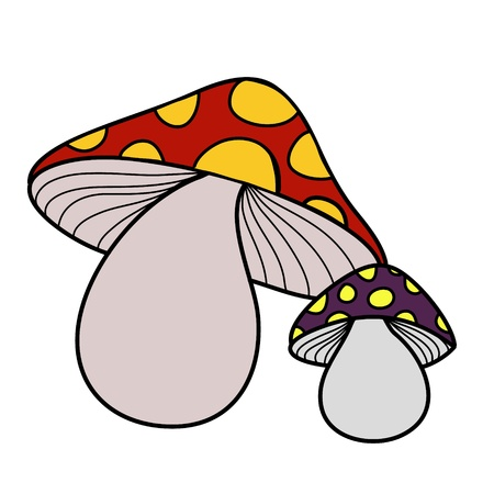 two beautiful color mushrooms Illustration