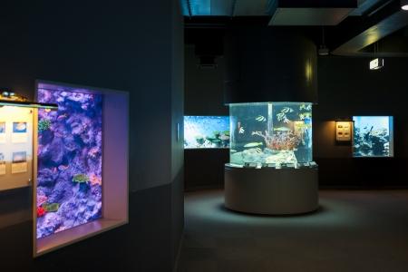 Aquarium in Noboribetsu Marine Park Hokkaido Japan