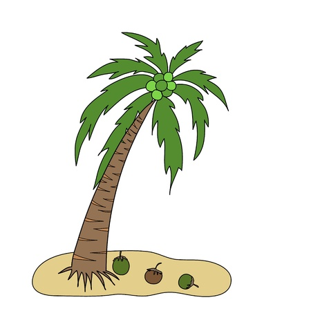 coconut tree is on a small island with three cocoanuts