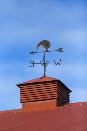 Kiwi bird weather vane on a rooftop Cromwell, Otago New Zealand Stock Photo
