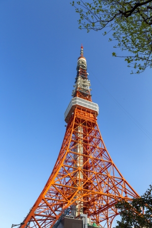 Tokyo tower in the blue sky Editorial