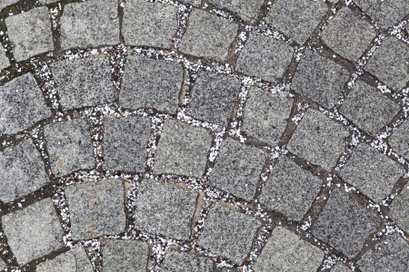 cobblestone, texture or background, stone pavement Stock Photo