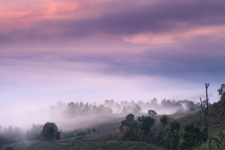 misty landscape in northern thailand, Chiang Mai, Thailand photo