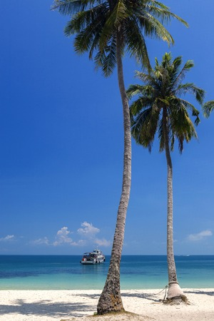 Coconut beach in Cow sleep (Wua Ta Lap) Island Stock Photo