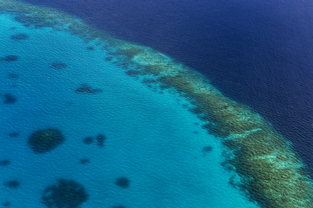 Coral Reef and detail of Atoll in Indean Ocean, Maldives