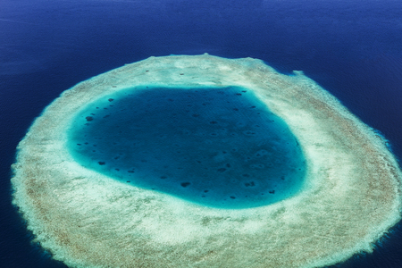atoll: Coral Reef and detail of Atoll in Indean Ocean, Maldives