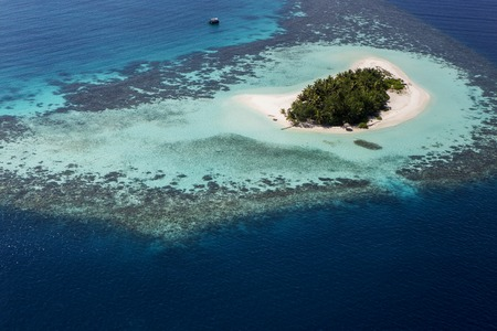 Coral Reef and detail of Atoll in Indean Ocean at Maldives, Aerial View from seaplane