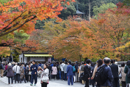 KYOTO, JAPAN - 20 NOVEMBER 2015: Visitors from most countries in the queue to buy ticket to watch the leaves change color in the Eikando Zenrin-ji temple.The temple very famous for its autumn colors Editorial