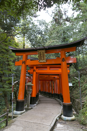 KYOTO, JAPAN - 19 NOVEMBER 2015:  The red Torii at Fushimi Inari Shrine. This place is one of the top tourist attraction point in Kyoto Japan