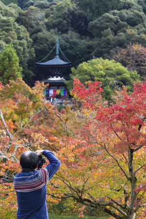 KYOTO, JAPAN - 20 NOVEMBER 2015: Tourists are taking pictures pagoda against autumn foliage in Eikan-do Zenrinji temple in Kyoto, Japan. This place is very famous for its autumn colors foliage Editorial