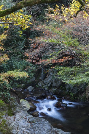 streamlet: Streamlet with overflowing water from Minoh (Mino-o) waterfall in autumn, Osaka, Japan Stock Photo