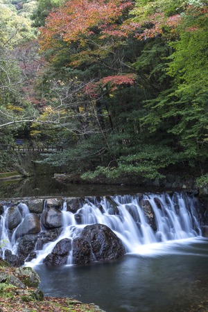 quasi: River wier with overflowing water from Minoh (Mino-o) waterfall in autumn, Osaka, Japan