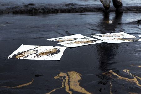Workers remove and clean up crude oil spilled with absorbent paper from Prao Bay on July 31, 2013 in Samet Island, Rayong, Thailand