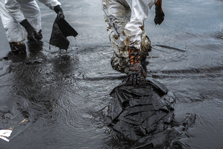 Workers remove and clean up crude oil spilled with absorbent paper. Stock Photo