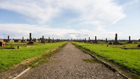 A long road which used to be lined by numerous buildings where the prisoners would live  We can still see the chimneys