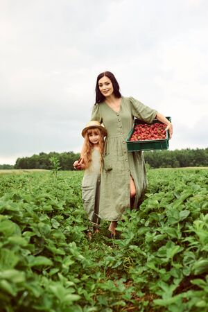 Beautiful young caucasian mother with her daughter in a linen dress with a basket of strawberries gathers a new crop and walking in a green field Standard-Bild