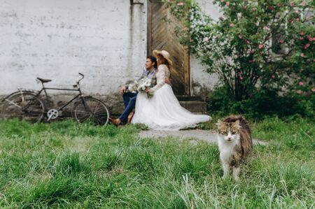 A beautiful young couple bride and groom sitting near the old house with a cat
