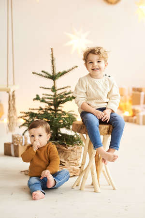Portrait of a little handsome brothers leaned on a wooden chair near the Christmas tree in a white christmas decorated Banque d'images