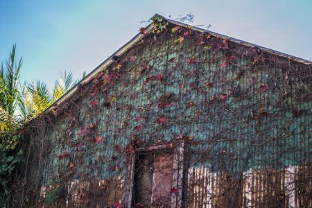 tin: Tin Building in Northern California