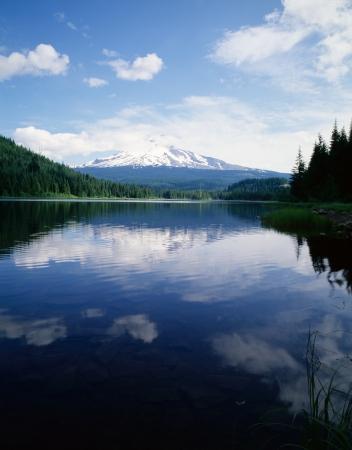 trillium lake: Mt Hood with Trillium Lake, Oregon