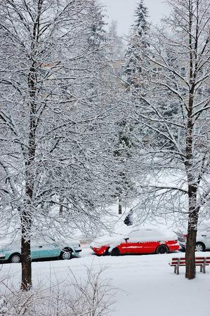 snow storm: Street after snow storm