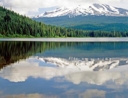 trillium lake: Mt.Hood with Trillium Lake in Oregon