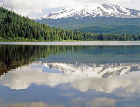 trillium: Mt.Hood and Trillium Lake in Oregon Stock Photo
