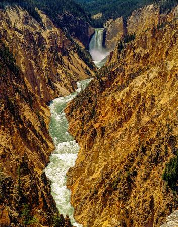 lower yellowstone falls: Lower Falls in Yellowstone National Park, Wyoming