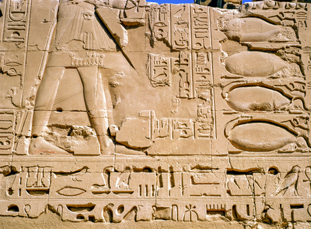 Relief and Egyptian hieroglyphs , Luxor 写真素材