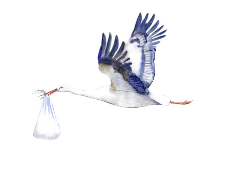 Stork with baby.Watercolor hand drawn illustration.