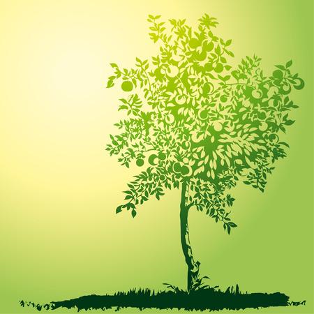 Apple Tree Stock Illustratie