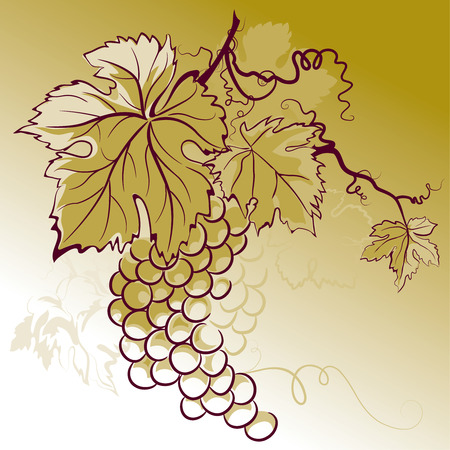 Grapes With Leaves Stock Vector - 3759243