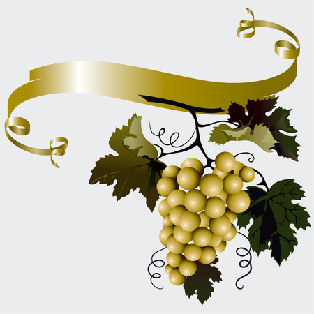 grape vine: Grapes With Leaves