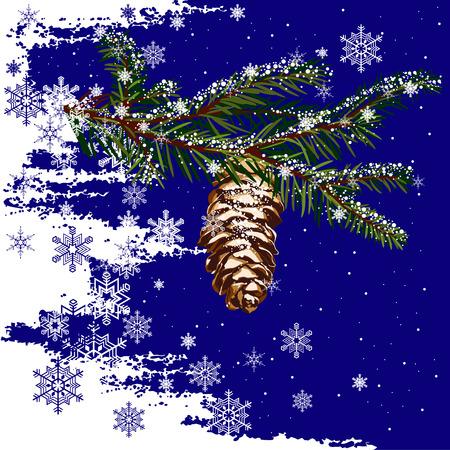fir cone: Subdivisi�n de abeto con cono y la nieve de fondo