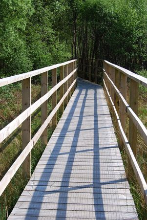 vanishing: wooden footbridge vanishing into a forest