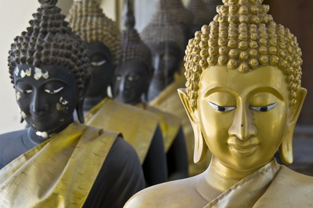 lots of statues of buddha sitting in lines photo