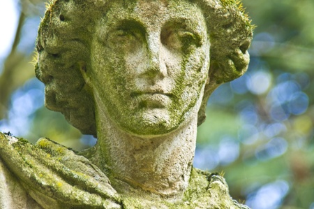 old  tombstone on the Melaten cemetery in Cologne photo