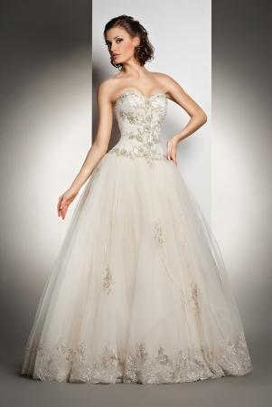 De mooie jonge vrouw poseren in een trouwjurk over grijze backround