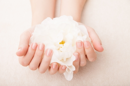 Beautiful hand with perfect nail french manicure and white flower Stock fotó