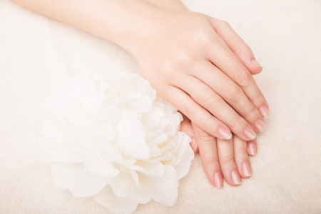Beautiful hand with perfect nail french manicure and white flower Imagens