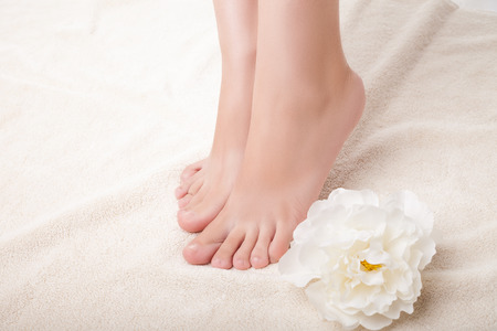 hygien: care for beautiful woman legs. Legs and flower composition. Isolated over white background. Stock Photo