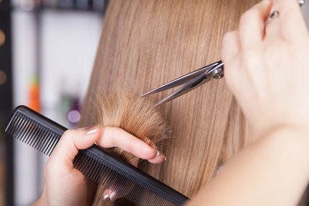 hairstyles: Hairdresser cut blond hair of a woman. Close-up.