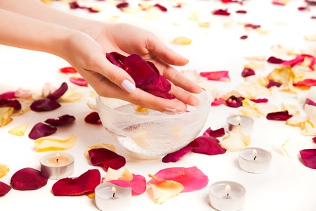 Cropped close up tender female hands holding rose petals above bowl surrounded with more rose petals.