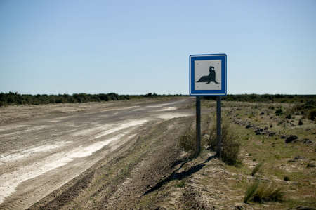 Nice rare road sign on Peninsula Valdes, Argentina with the silhouette of an elephant seal. Stock Photo - 2874944