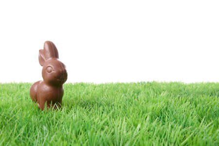 Single chocolate rabbit on grass, isolated on white background. Stock Photo
