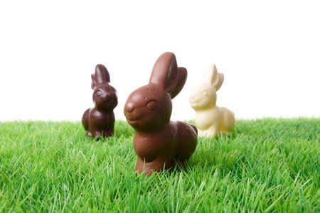 trio: Tr�o de deliciosos Pascua de conejitos de chocolate suizo.